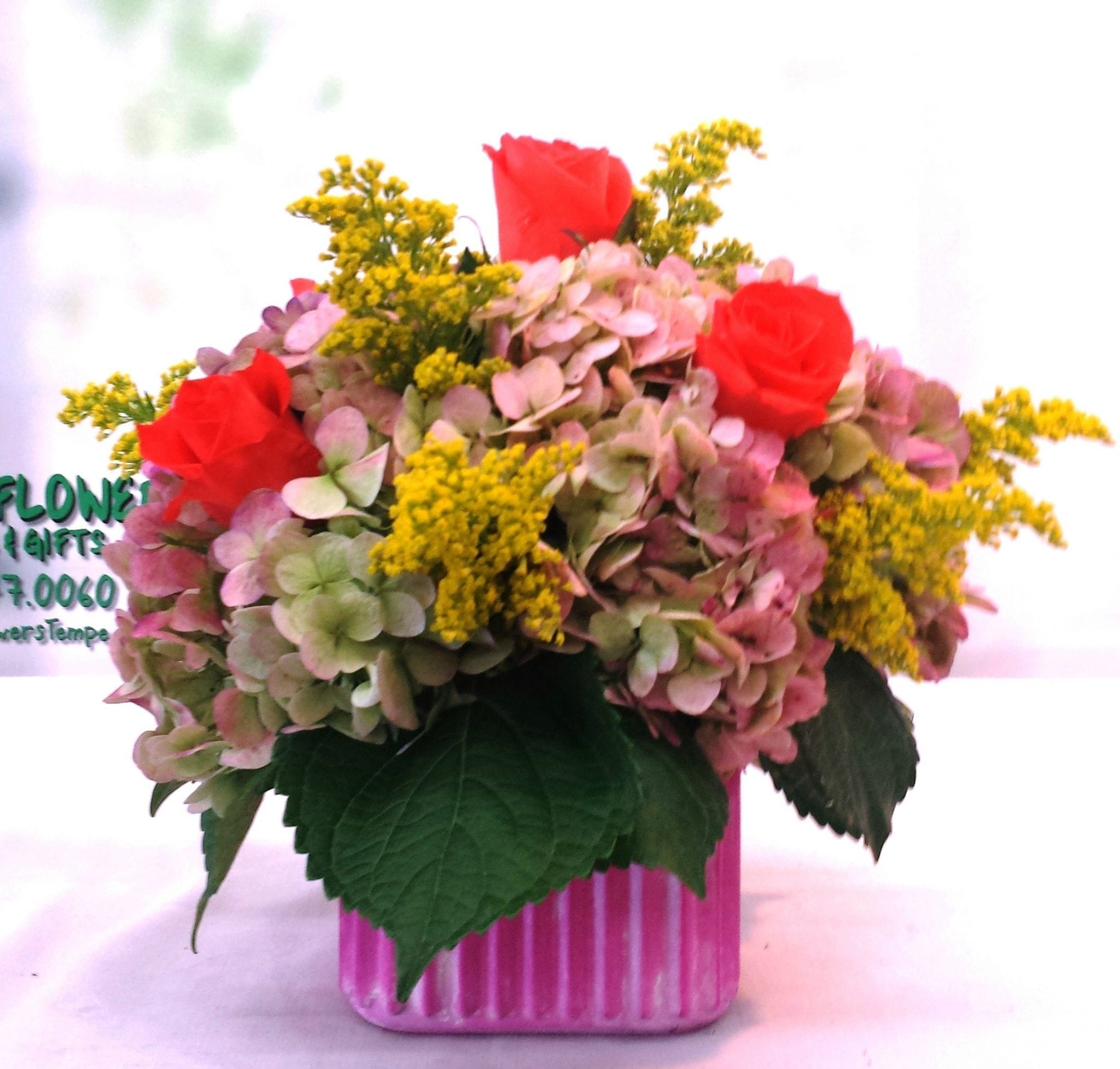 SAME DAY DELIVERY Antique Hydrangeas Cube