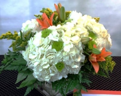 SAME DAY DELIVERY Contemporary Hydrangea Cube