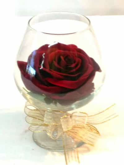 Forever Rose in Brandy Glass