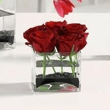 Roses In A Glass Cube